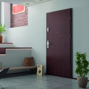 Usi de intrare apartament Entro