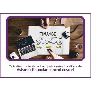 Asistent financiar control costuri