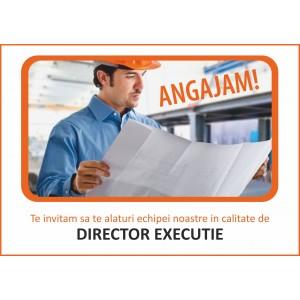 Director executie
